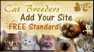 Cat breeders join Absolutely Kittens breeder referral